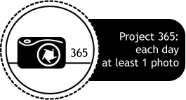Project 365 by Nadya Rubina